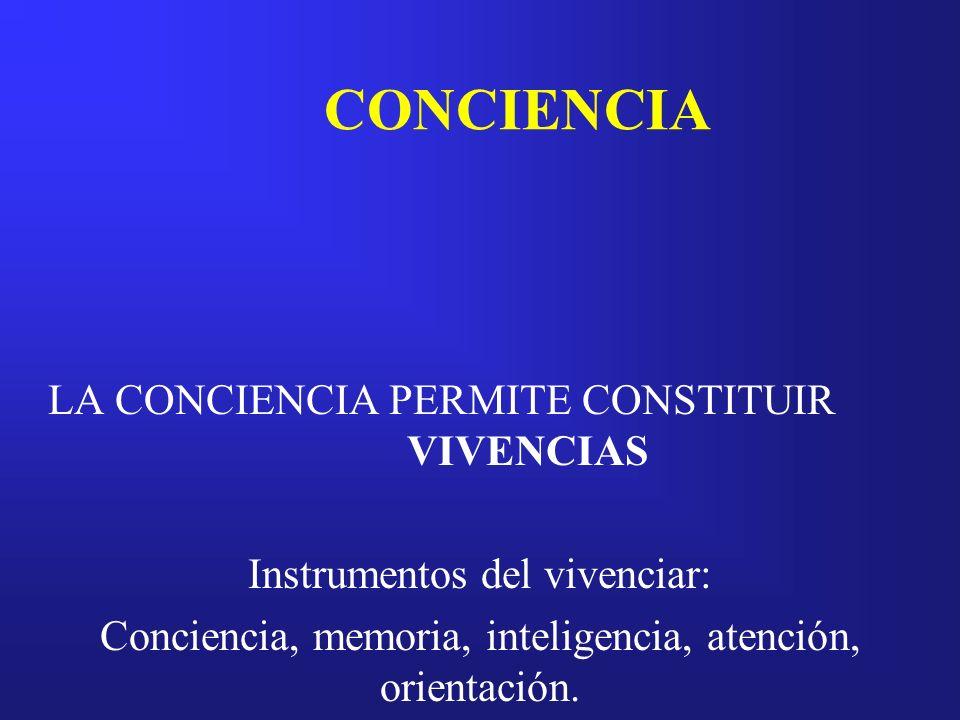 CONCIENCIA LA CONCIENCIA PERMITE CONSTITUIR VIVENCIAS