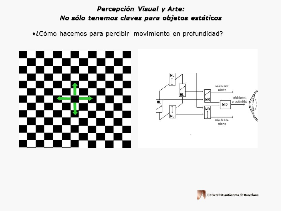 Percepción Visual y Arte: