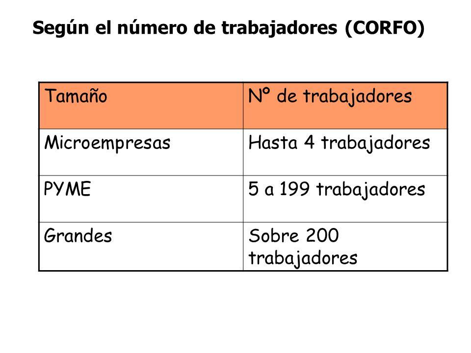 Según el número de trabajadores (CORFO)