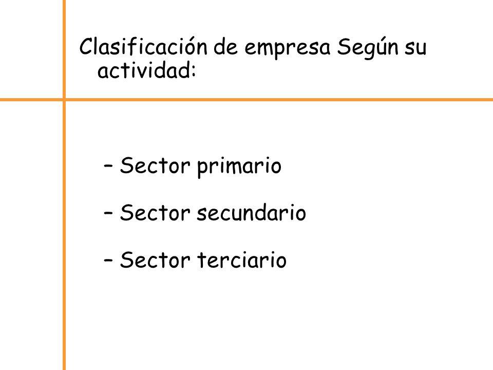 Clasificación de empresa Según su actividad:
