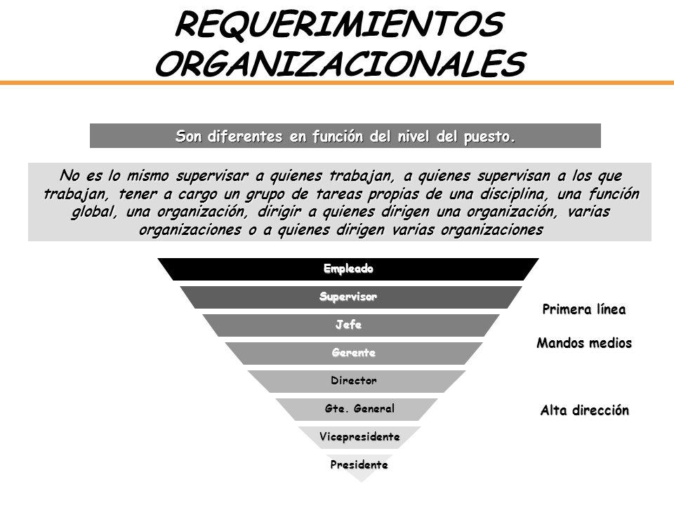 REQUERIMIENTOS ORGANIZACIONALES