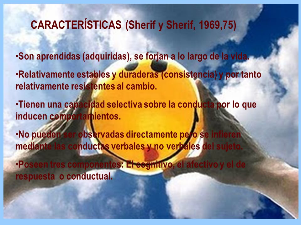 CARACTERÍSTICAS (Sherif y Sherif, 1969,75)