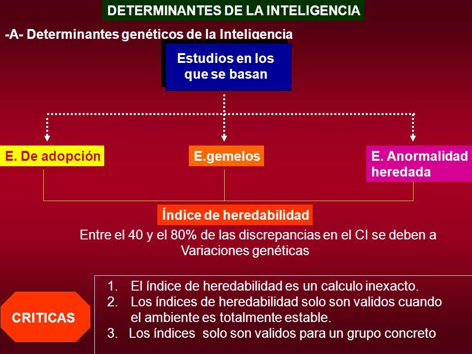 DETERMINANTES DE LA INTELIGENCIA