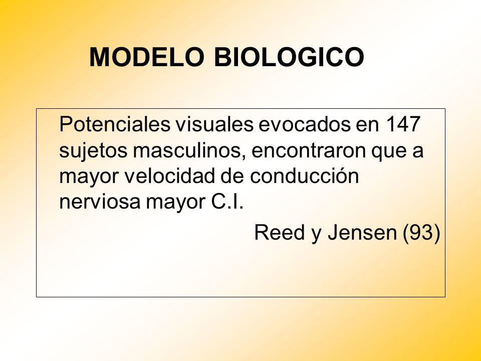 MODELO BIOLOGICO Potenciales visuales evocados en 147 sujetos masculinos, encontraron que a mayor velocidad de conducción nerviosa mayor C.I.
