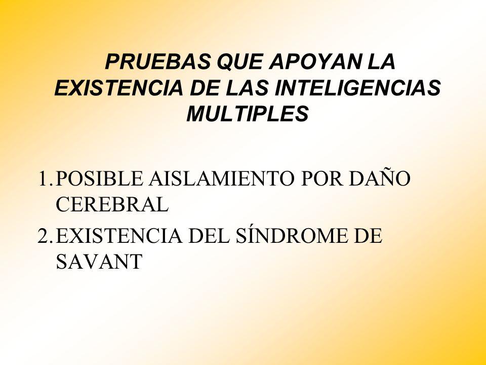 PRUEBAS QUE APOYAN LA EXISTENCIA DE LAS INTELIGENCIAS MULTIPLES