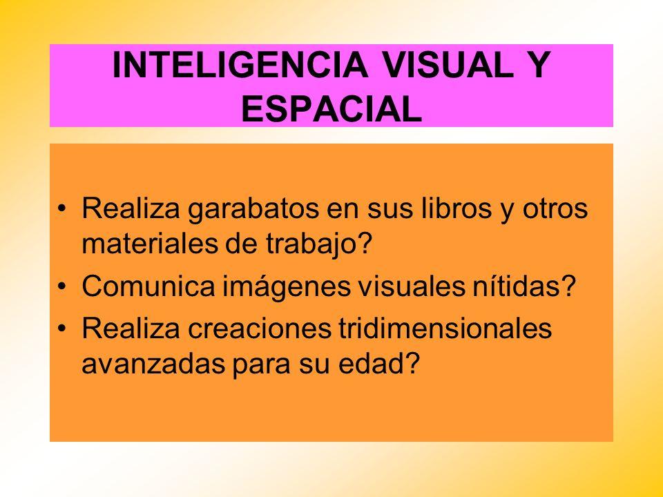 INTELIGENCIA VISUAL Y ESPACIAL