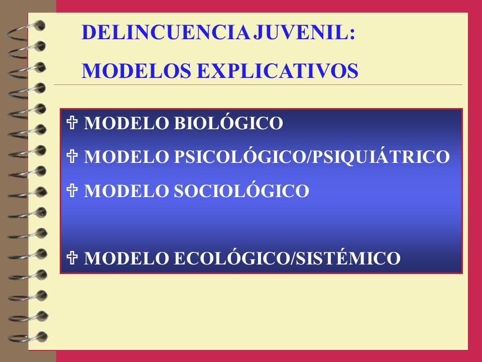 DELINCUENCIA JUVENIL: MODELOS EXPLICATIVOS