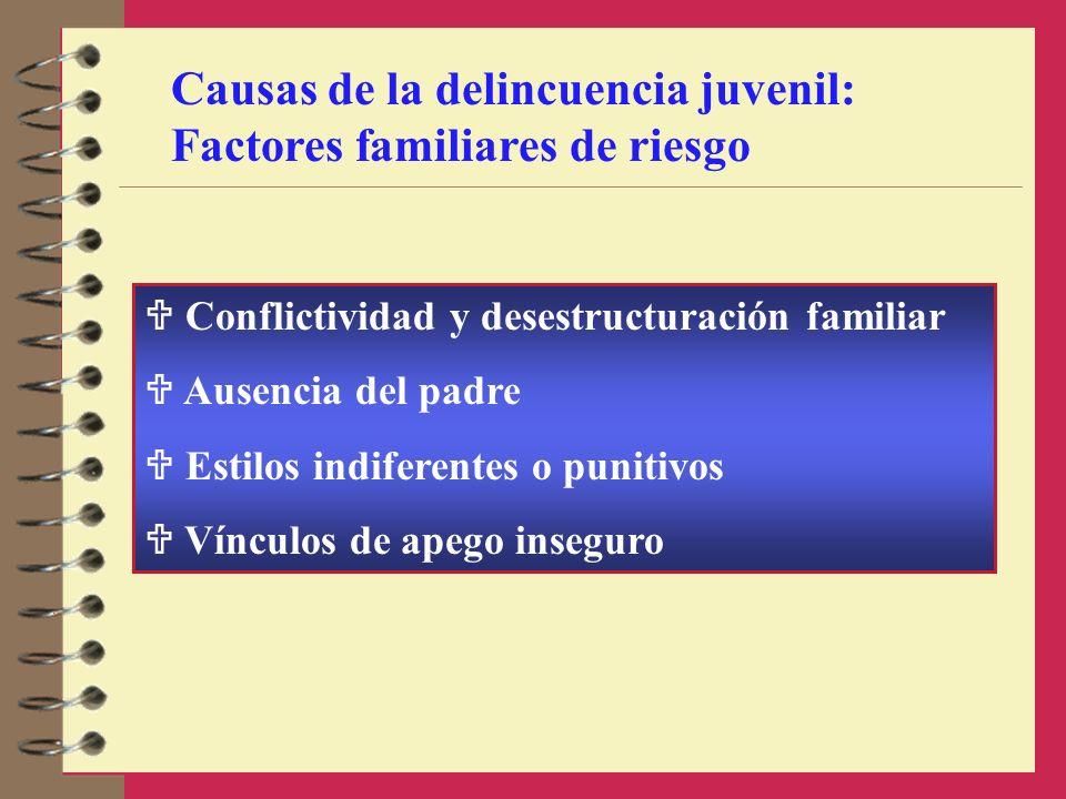Causas de la delincuencia juvenil: Factores familiares de riesgo