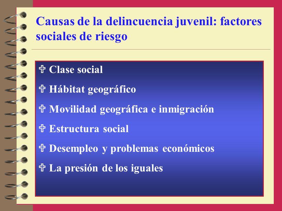 Causas de la delincuencia juvenil: factores sociales de riesgo