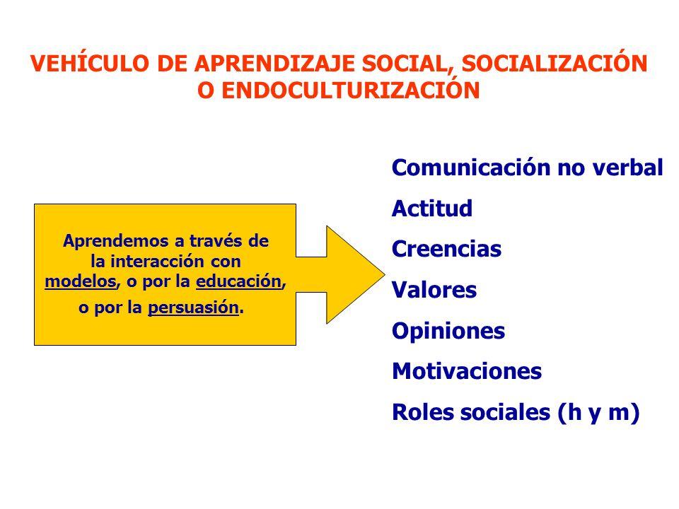 VEHÍCULO DE APRENDIZAJE SOCIAL, SOCIALIZACIÓN O ENDOCULTURIZACIÓN
