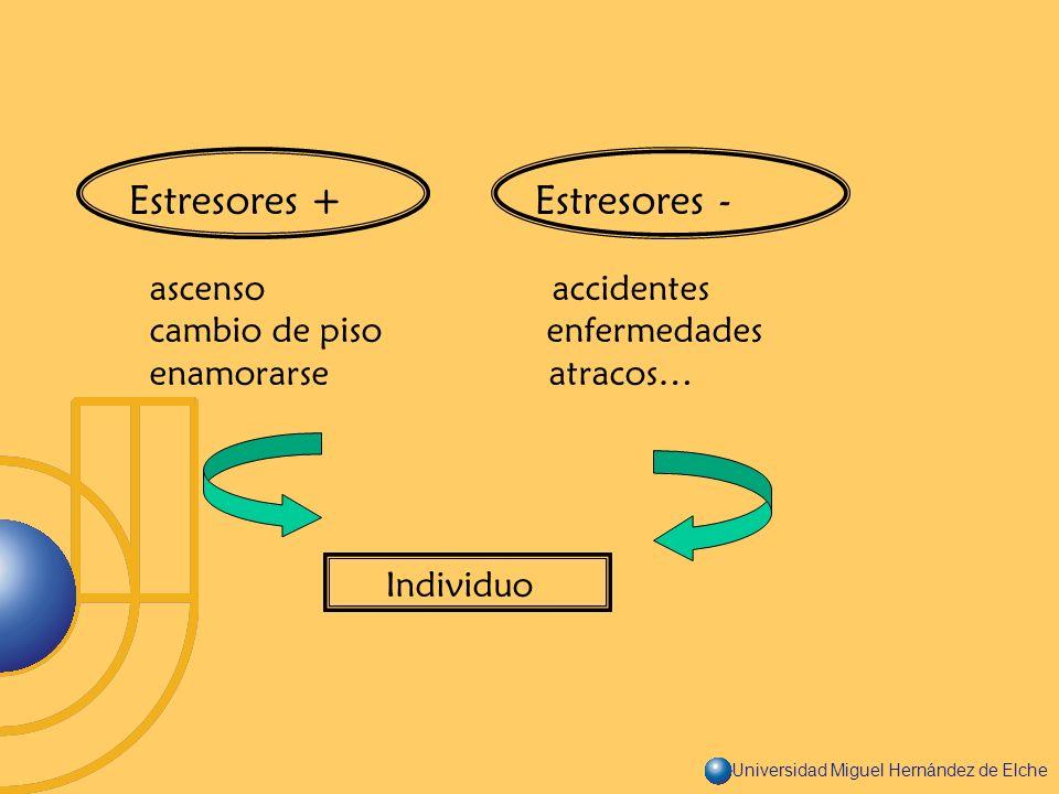 Estresores + Estresores -