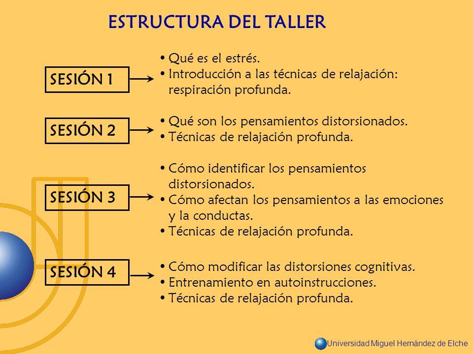 ESTRUCTURA DEL TALLER SESIÓN 1 SESIÓN 2 SESIÓN 3 SESIÓN 4