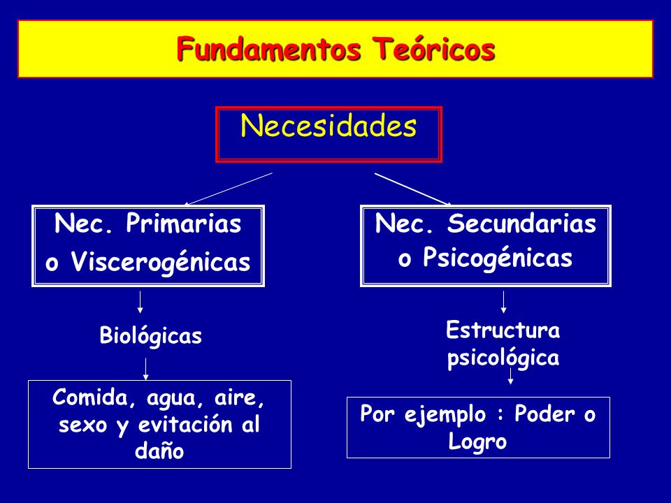 Fundamentos Teóricos Necesidades Nec. Primarias o Viscerogénicas