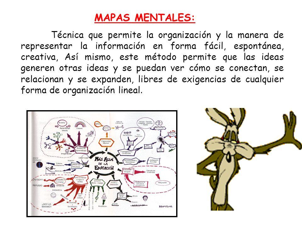 MAPAS MENTALES: