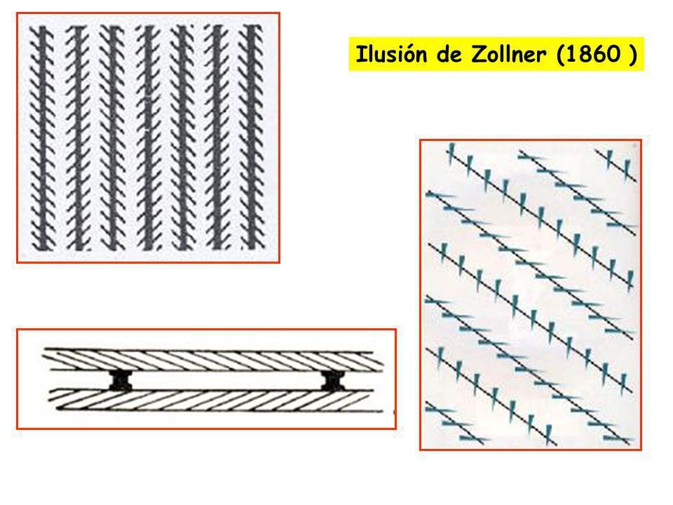 Ilusión de Zollner (1860 )
