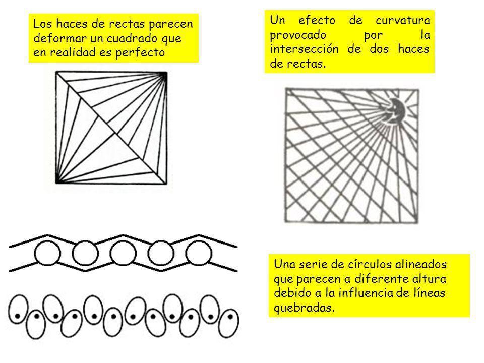 Un efecto de curvatura provocado por la intersección de dos haces de rectas.