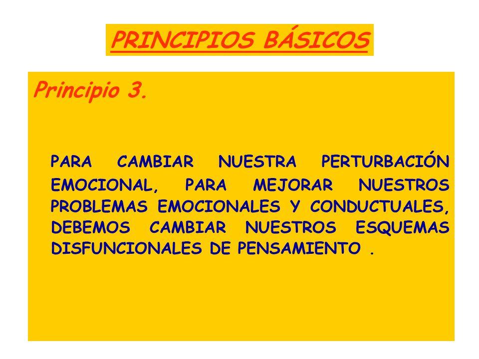 PRINCIPIOS BÁSICOS Principio 3.