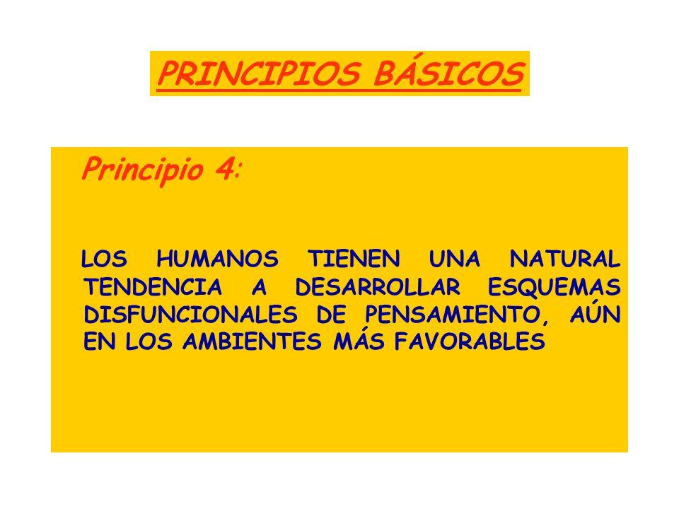 PRINCIPIOS BÁSICOS Principio 4: