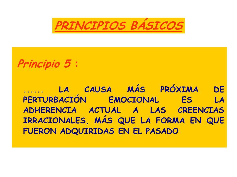PRINCIPIOS BÁSICOS Principio 5 :