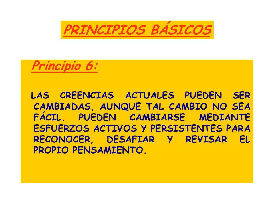 PRINCIPIOS BÁSICOS Principio 6: