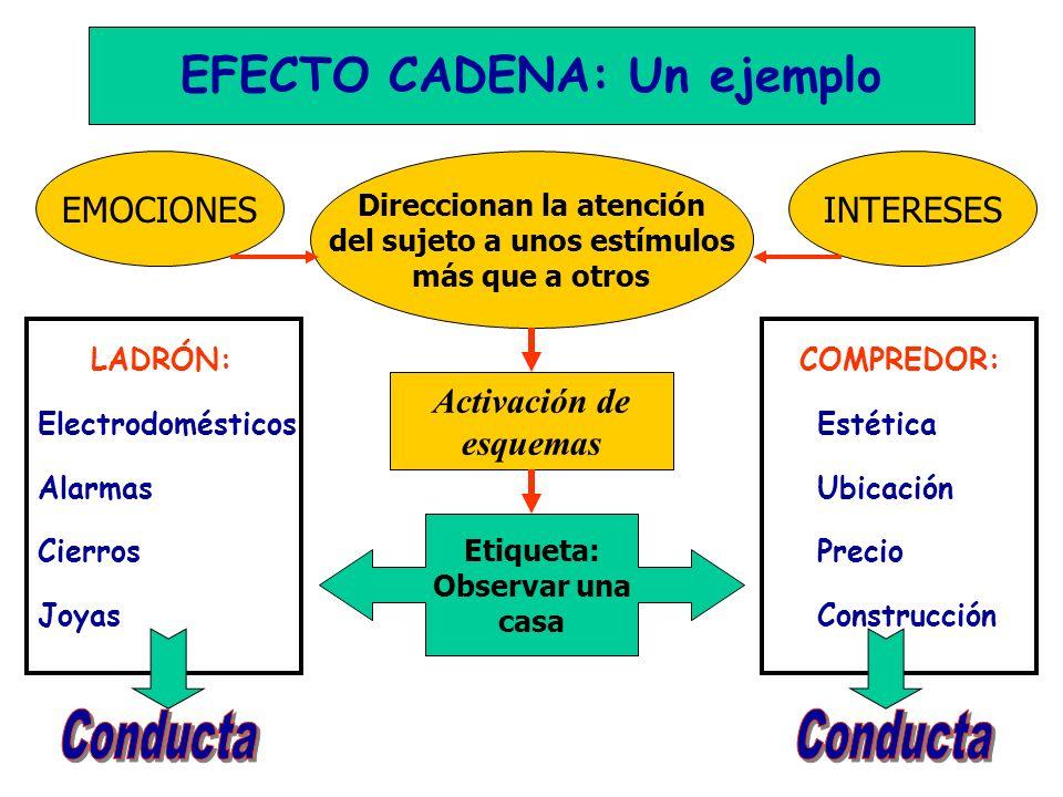 Conducta Conducta EFECTO CADENA: Un ejemplo EMOCIONES INTERESES