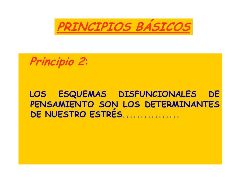 PRINCIPIOS BÁSICOS Principio 2: