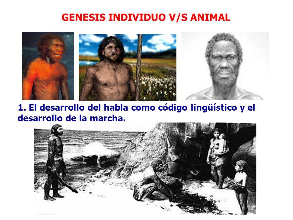 GENESIS INDIVIDUO V/S ANIMAL