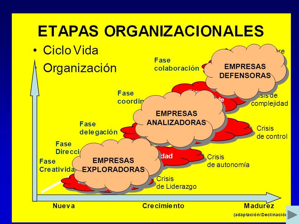 EMPRESAS DEFENSORAS EMPRESAS ANALIZADORAS EMPRESAS EXPLORADORAS