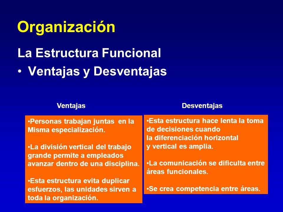 Organización La Estructura Funcional Ventajas y Desventajas