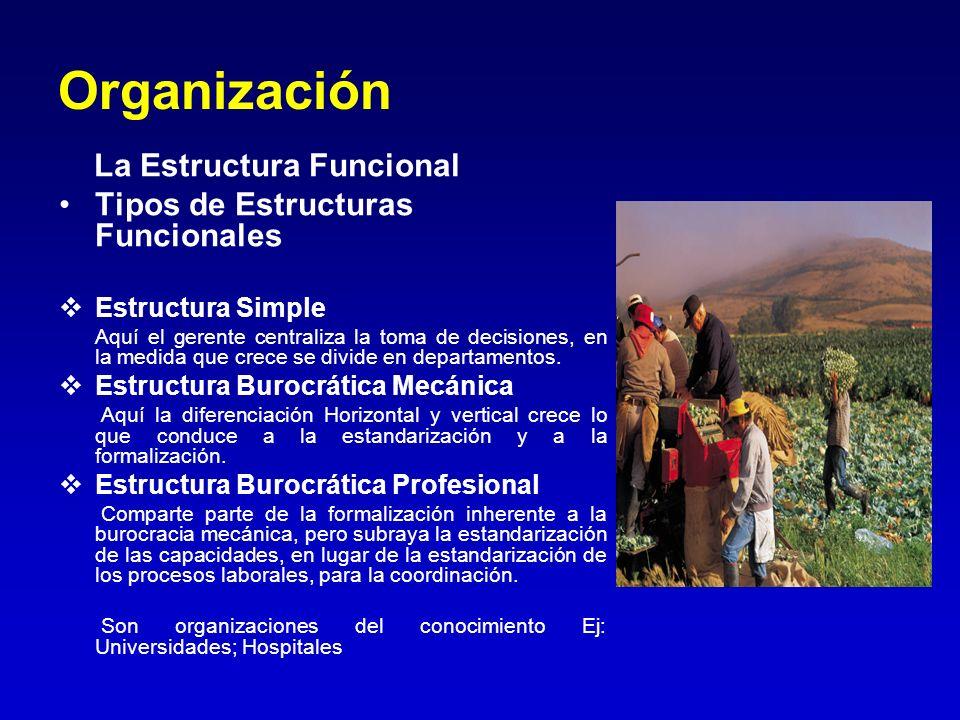 Organización La Estructura Funcional Tipos de Estructuras Funcionales