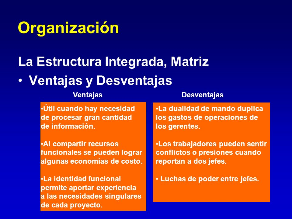 Organización La Estructura Integrada, Matriz Ventajas y Desventajas