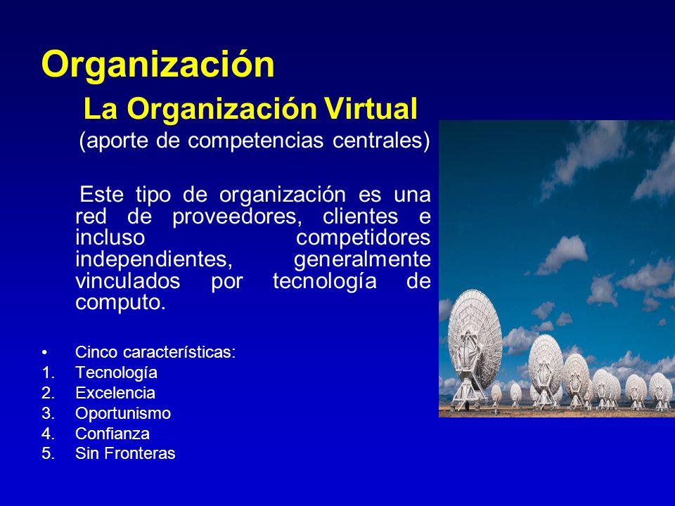 Organización La Organización Virtual