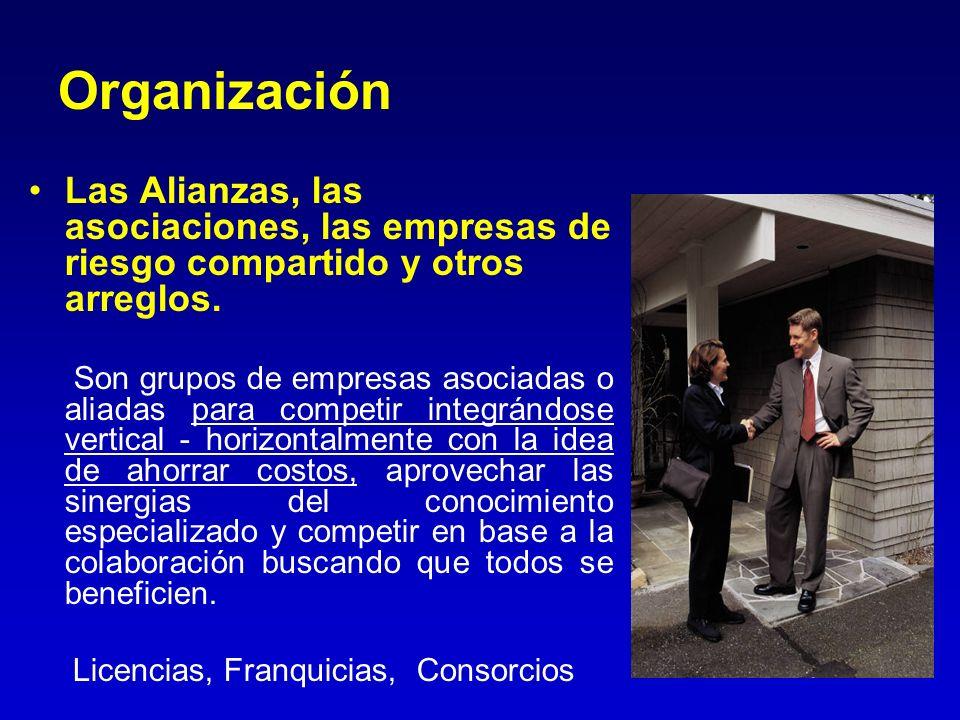 Organización Las Alianzas, las asociaciones, las empresas de riesgo compartido y otros arreglos.