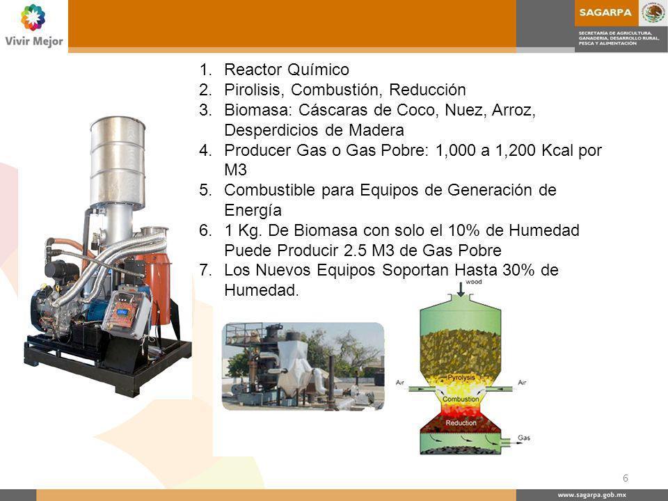 Reactor Químico Pirolisis, Combustión, Reducción. Biomasa: Cáscaras de Coco, Nuez, Arroz, Desperdicios de Madera.