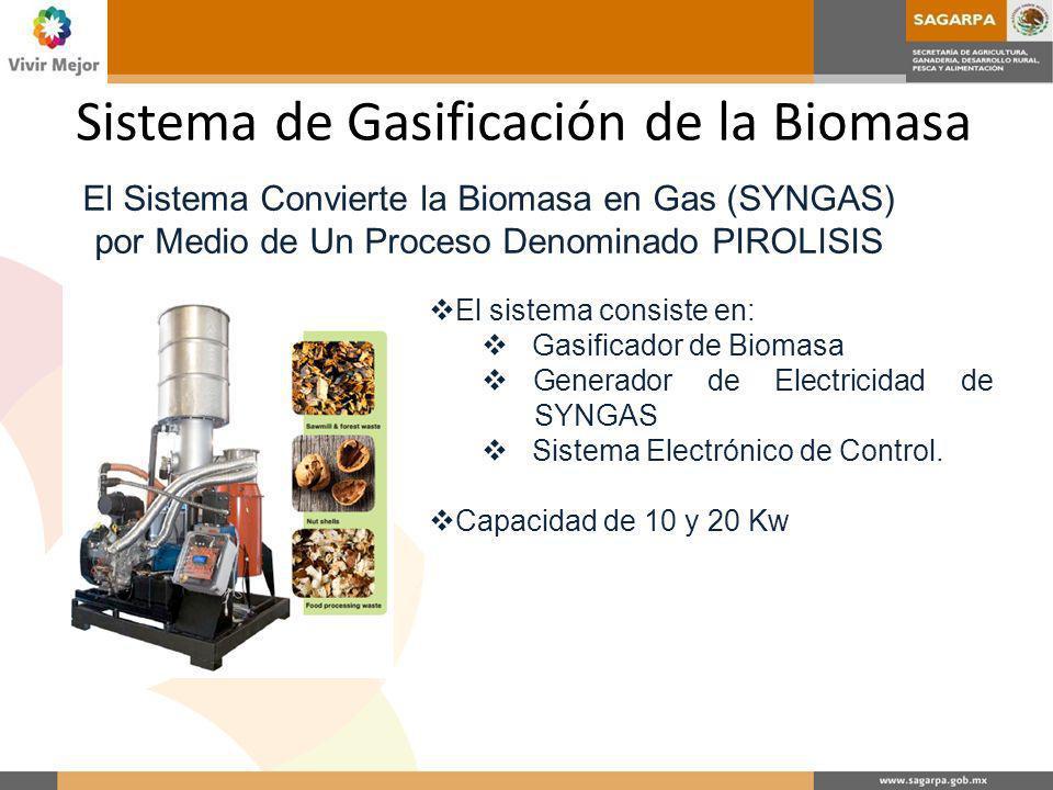 Sistema de Gasificación de la Biomasa