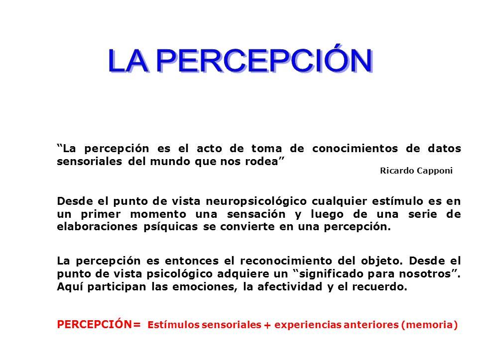 LA PERCEPCIÓN La percepción es el acto de toma de conocimientos de datos sensoriales del mundo que nos rodea