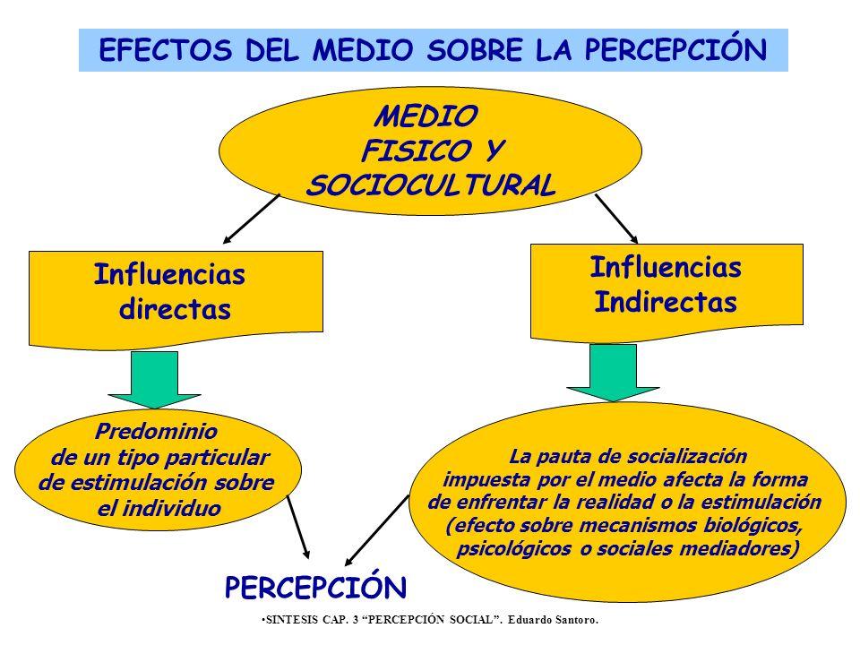 EFECTOS DEL MEDIO SOBRE LA PERCEPCIÓN