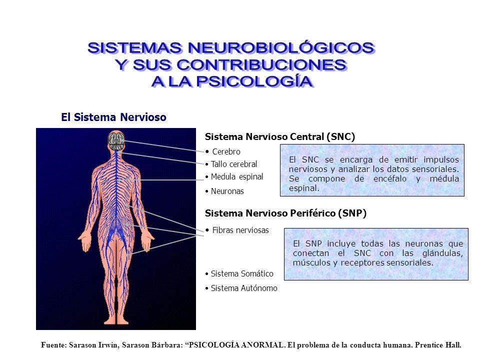 SISTEMAS NEUROBIOLÓGICOS