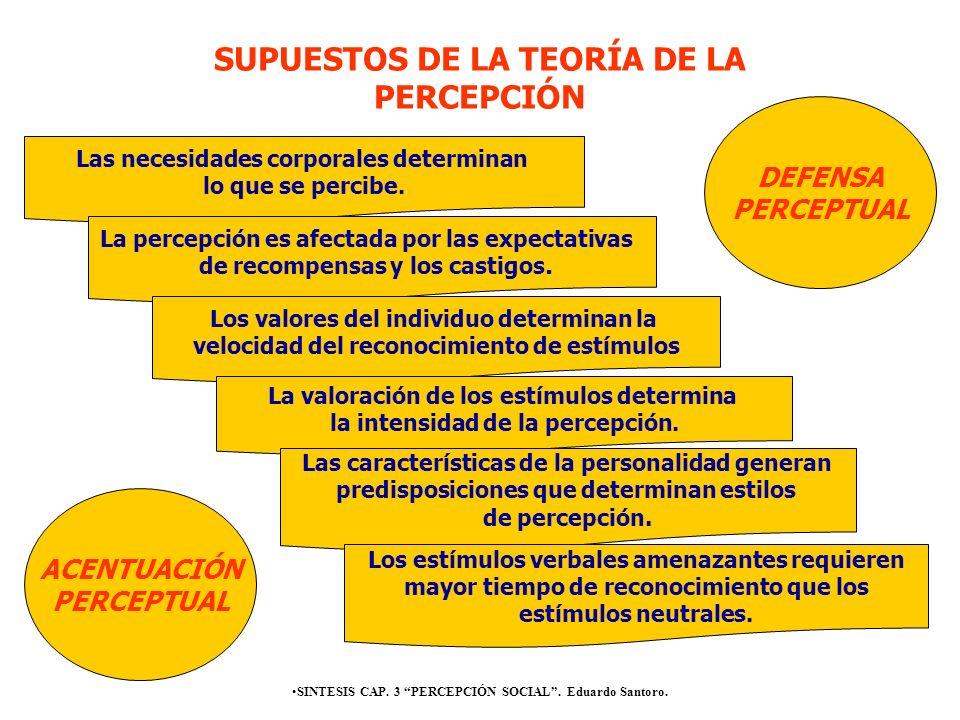 SUPUESTOS DE LA TEORÍA DE LA PERCEPCIÓN