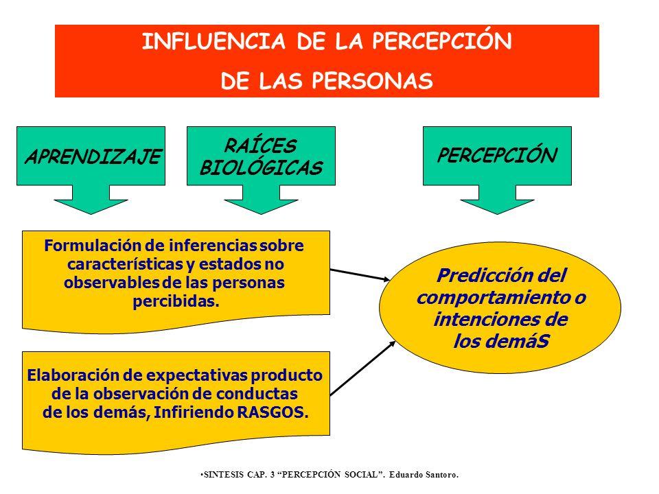 INFLUENCIA DE LA PERCEPCIÓN DE LAS PERSONAS