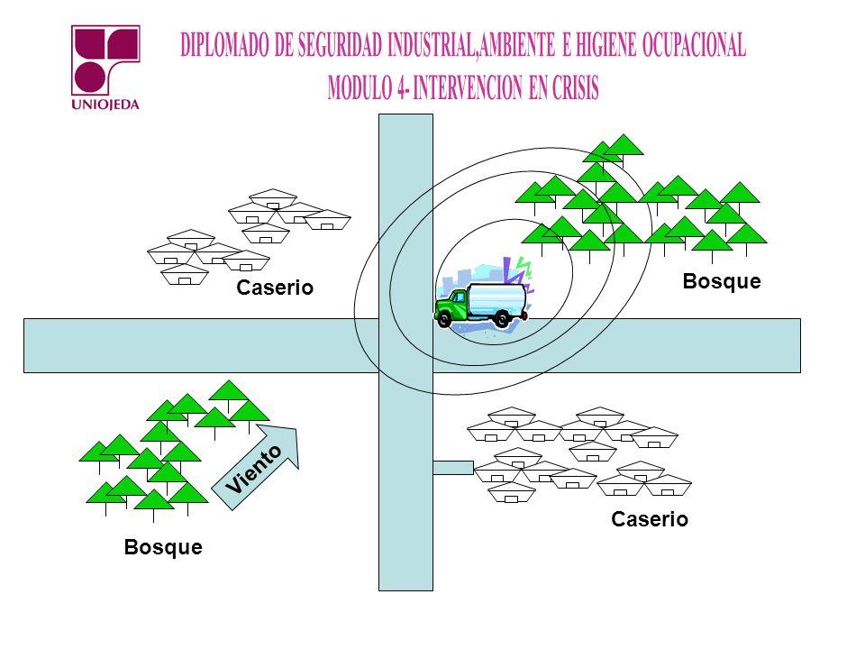Bosque Caserio Viento Caserio Bosque