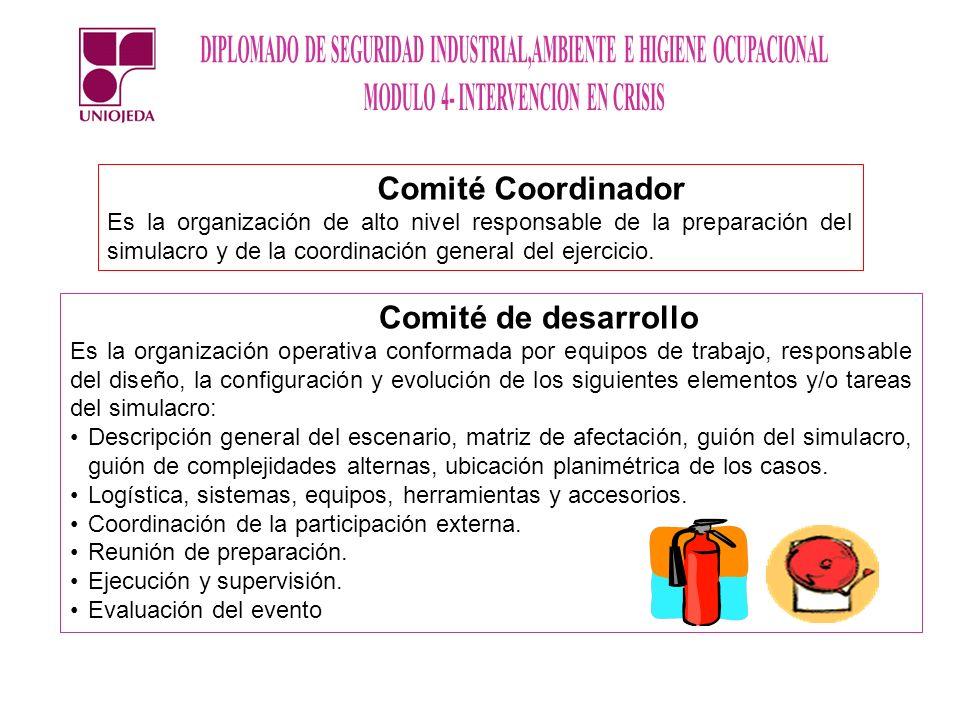 Comité Coordinador Comité de desarrollo