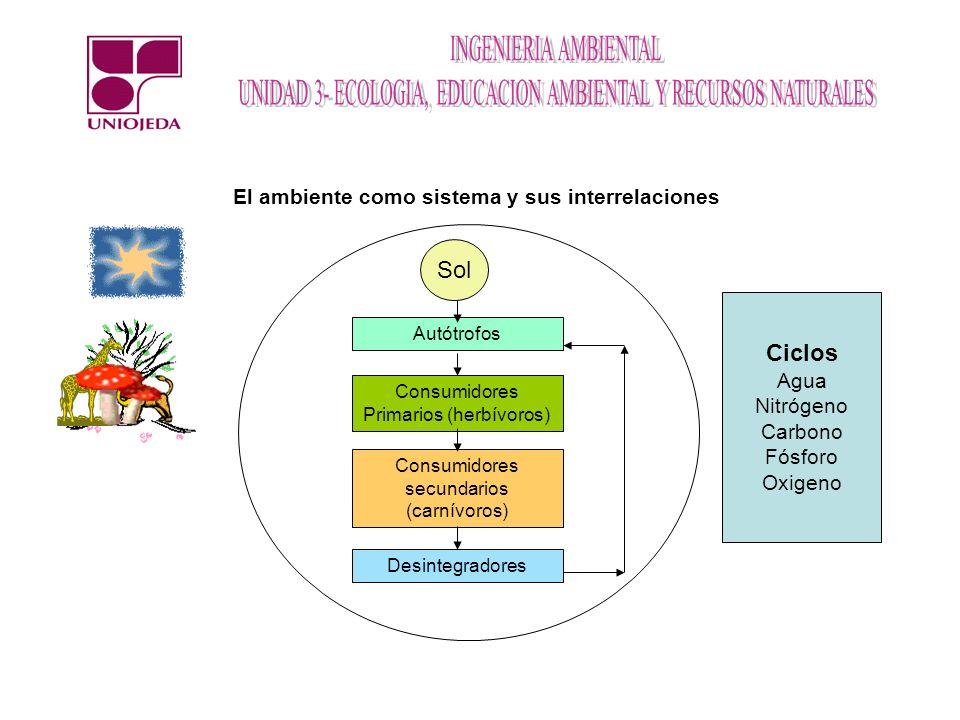 Sol Ciclos El ambiente como sistema y sus interrelaciones Agua