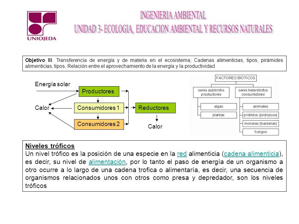 Objetivo III. Transferencia de energía y de materia en el ecosistema; Cadenas alimenticias, tipos, pirámides alimenticias, tipos, Relación entre el aprovechamiento de la energía y la productividad
