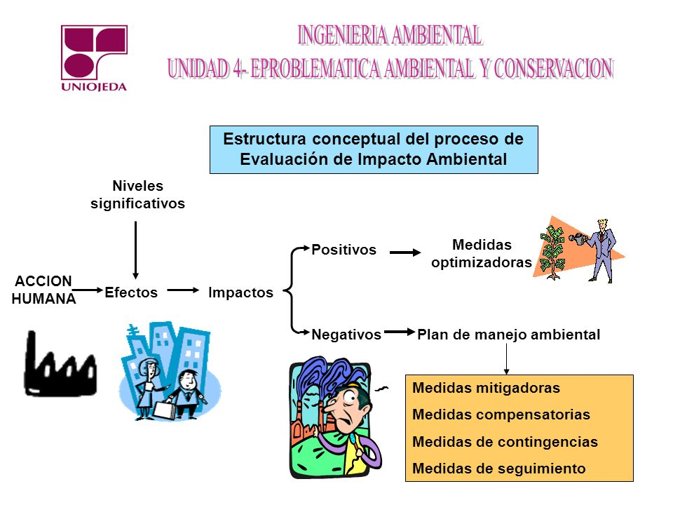 Estructura conceptual del proceso de Evaluación de Impacto Ambiental