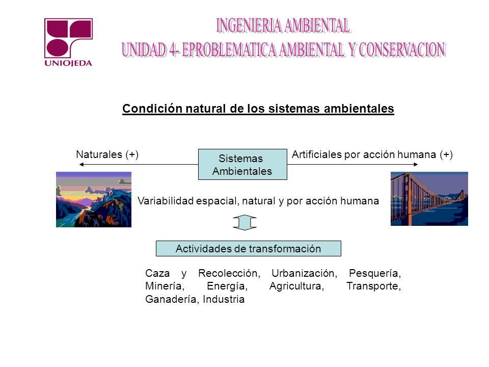 Condición natural de los sistemas ambientales