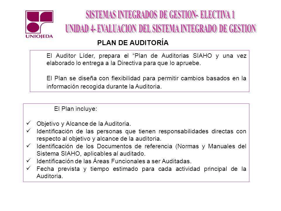PLAN DE AUDITORÍA El Auditor Líder, prepara el Plan de Auditorias SIAHO y una vez elaborado lo entrega a la Directiva para que lo apruebe.