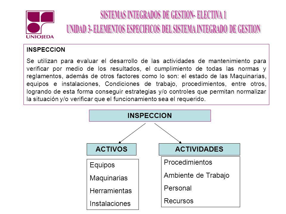 INSPECCION ACTIVOS ACTIVIDADES