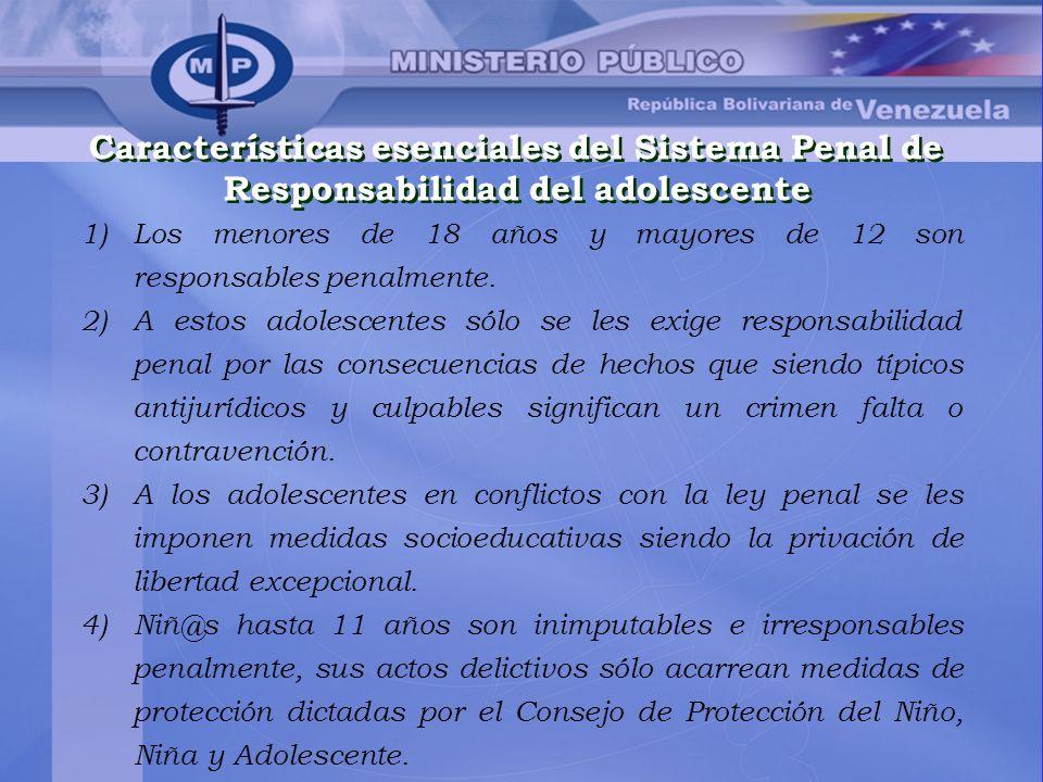 Características esenciales del Sistema Penal de