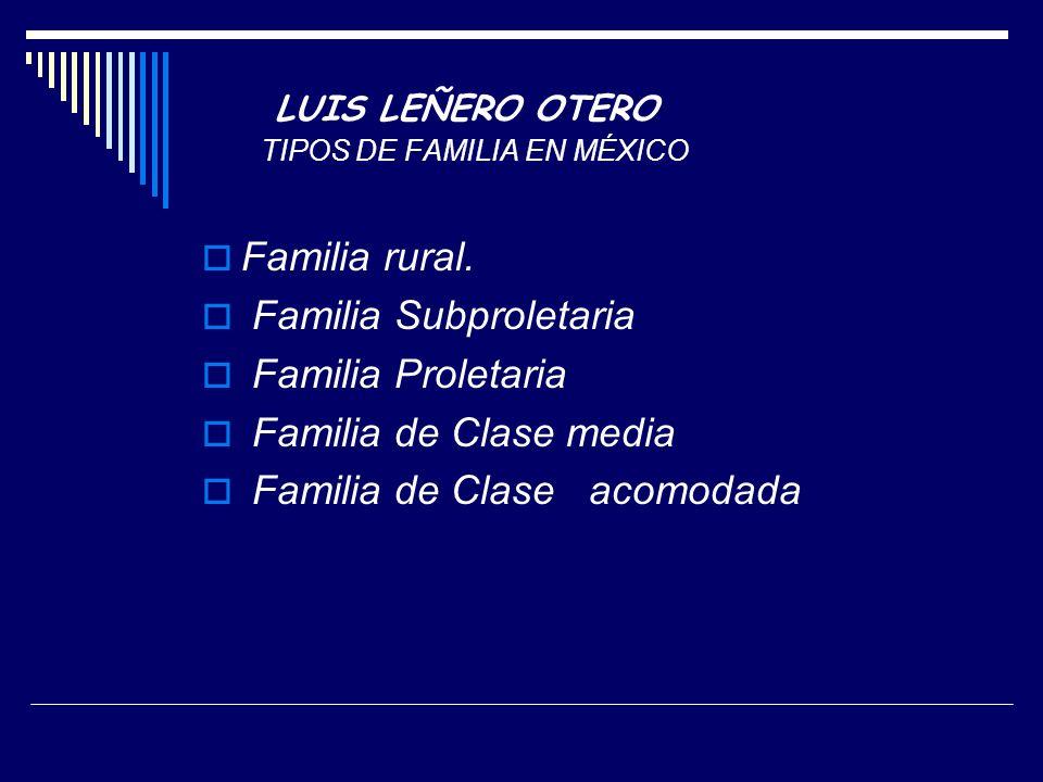 LUIS LEÑERO OTERO TIPOS DE FAMILIA EN MÉXICO
